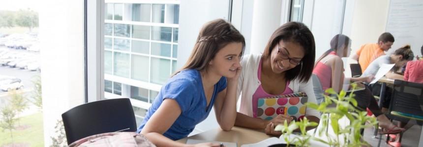 教育機関向けの留学手続きサービス